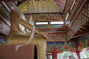 OM RETREAT @ Land of Medicine Buddha
