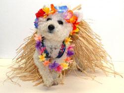 hula-dancer